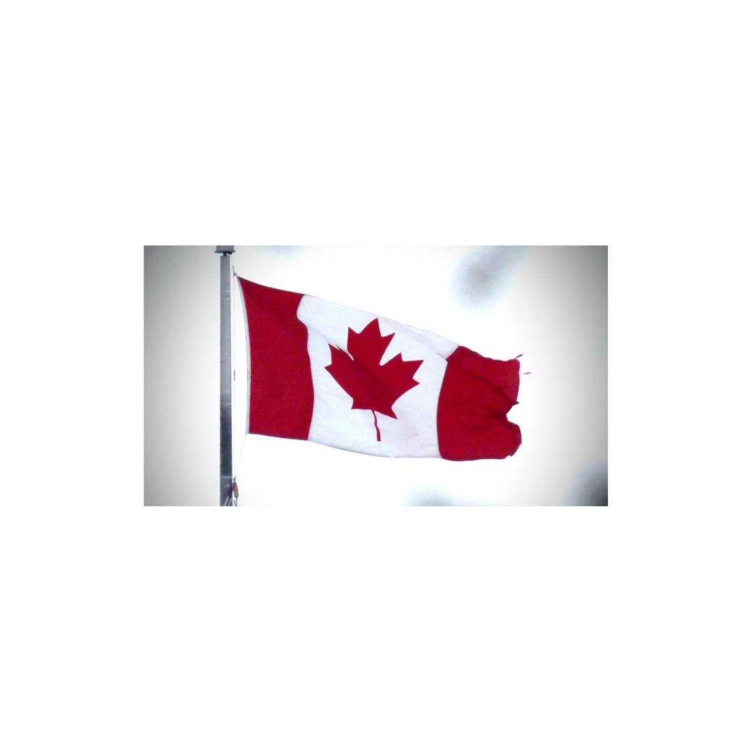 برنامه اعطای اقامت دائم به فارغ التحصیلان و نیروهای کاری حاضر در کانادا